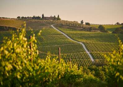 5 Wineries to Visit Around the World